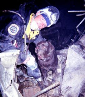 Köpek Moxie'nin morali düzelsin diye İtfaiyeciler, göçük altına saklanıp, Moxie'nin kendilerini bulmasını beklediler.