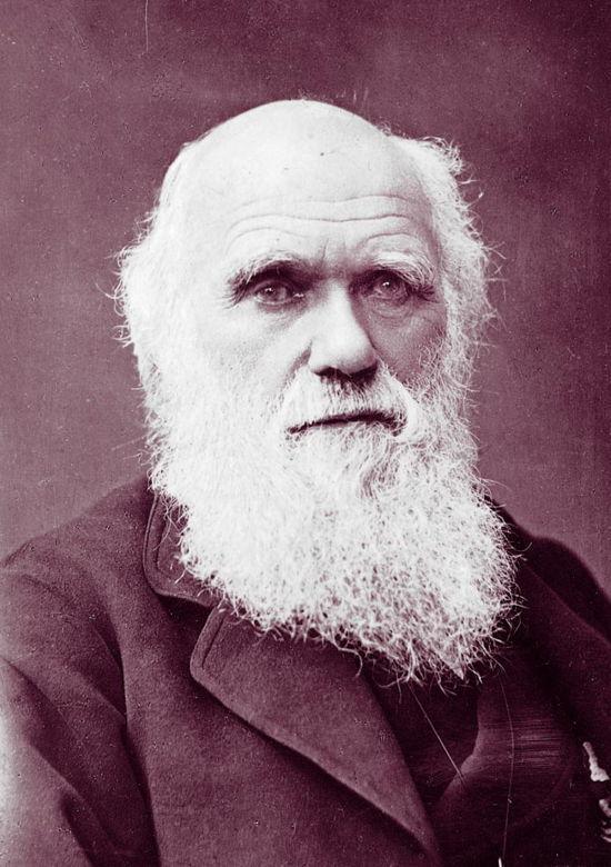 Evrim teorisinin babası Darwin, akraba evliliği yaptı ve 10 çocuğu oldu.