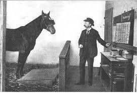 Matematik sorularına doğru yanıt veren Akıllı At'ın Sırrı!