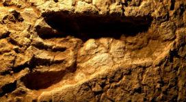 20 bin yıllık ayak izi fosillerinin, atalarımız hakkında anlattığı ilginç hikayeler!