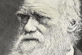 Ölçü birimi olarak Darwin!