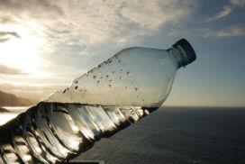 Deniz suyu içersek ne olur?