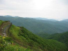Cehennemin ortasında yeşeren cennet! Kuzey ve Güney Kore arasındaki sınır, doğanın mucizesine sahne oluyor!