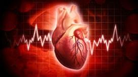 Kalp kanserden muaf mıdır?