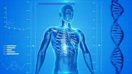 Anatomi ve fizyoloji arasında ne fark vardır?