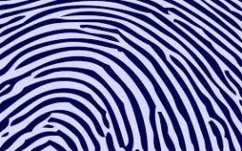 Hayvanların da insanlar gibi parmak izi var mıdır?