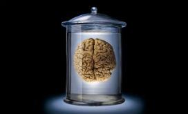 İlginç bir düşünce deneyi: Tüpteki Beyin