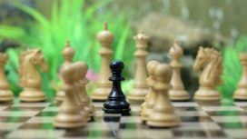 Yenilikçi çözümler bulma yeteneği nasıl geliştirilir?