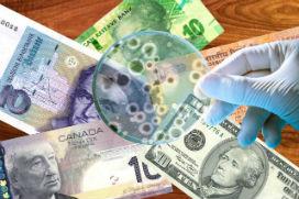 Annem yanılıyor muydu yoksa para geçekten hastalık taşır mı?