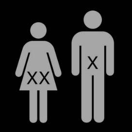 Erkeklerin neden X kromozomuna ihtiyacı vardır?