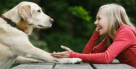 Hayvanlar neden bizim gibi konuşamaz?