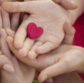 Organ Bağışında Yaş Sınırı Var mıdır?