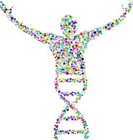Gen Mühendisliği Alın Yazımızı Değiştirebilir mi?