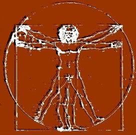 Vitruvius Adamı'nın Hikayesi