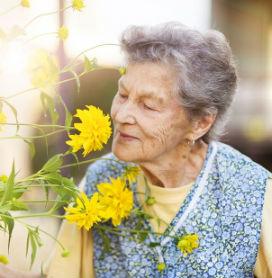 Yaşlandıkça Koku Duyusu Körelir mi?